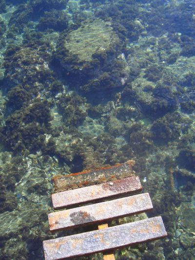 Metal steps descending into a crystal clear sea.