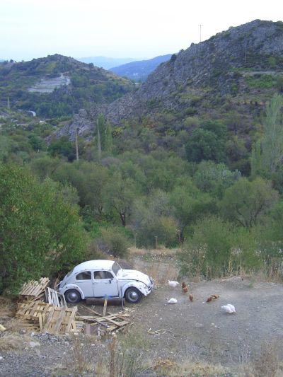 In the Trodos mountains.