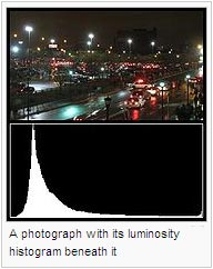 A photograph with its luminosity histogram beneath it