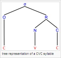 tree representation of a CVC syllable