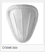 Cricket box