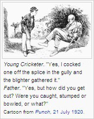 Cricket glossary. Cartoon from Punch, 21 July 1920